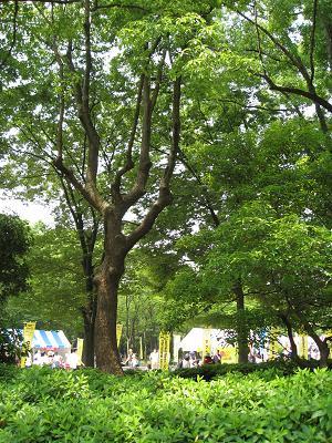 名城公園5.18