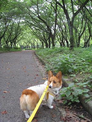 平和公園散策7.10