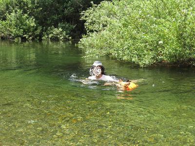一緒に泳ぐ8.3