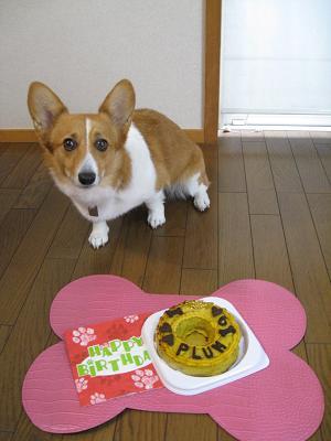 ケーキと記念撮影10.25
