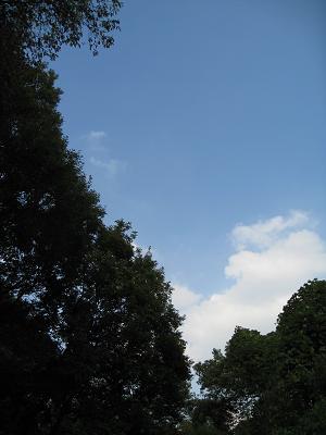 空が高い10.21