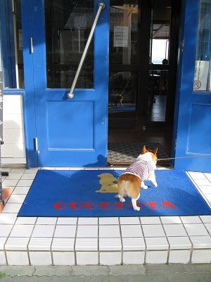 青い入り口11.2