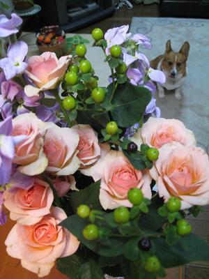 花束とプー2.8