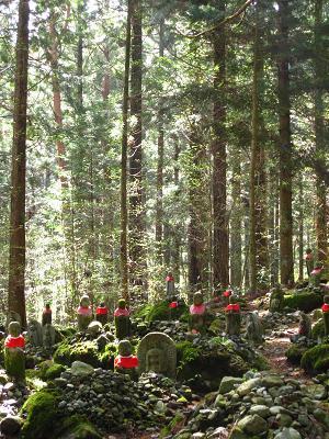 神秘的な森4.18