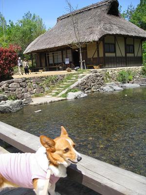 川島環境楽園4.23