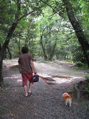 古戦場公園を散歩6.14