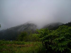 うどと今日の山