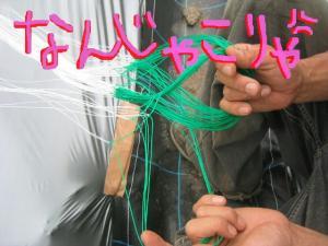 きゅうりネット 2
