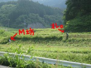 M坊と草刈り