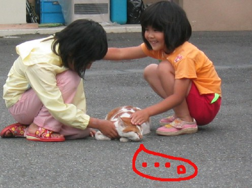 近所のネコと近所の子ども