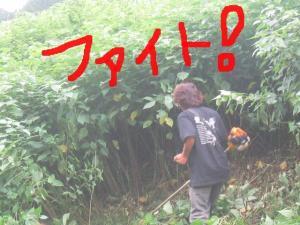 草刈り R1