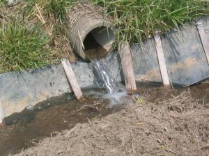 田んぼに水を入れる。