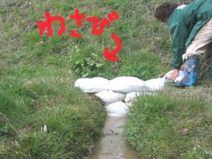 涌き水を利用する 2
