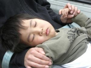 軽トラの荷台で寝てみたり。