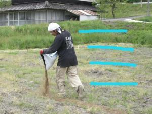 肥料まき 3