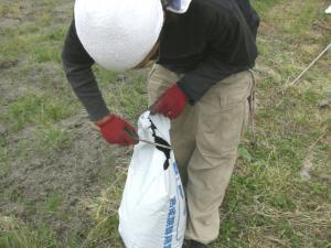 肥料まき 2