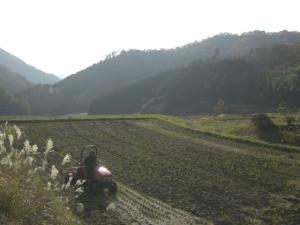 田んぼ耕す。