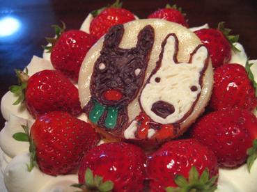 3月4日ケーキ2
