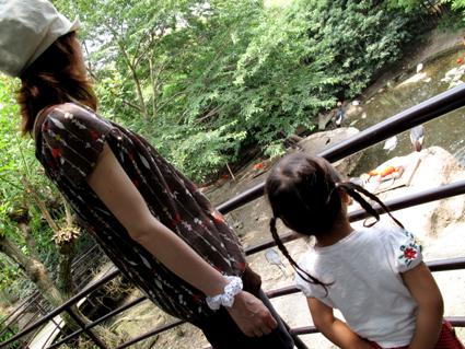 2009.6動物園1