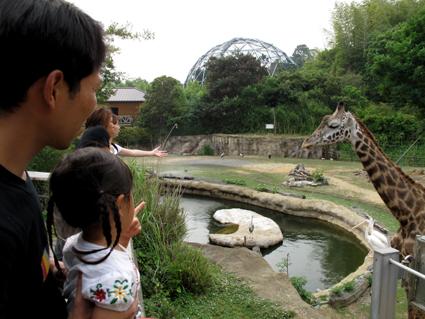 2009.6動物園2