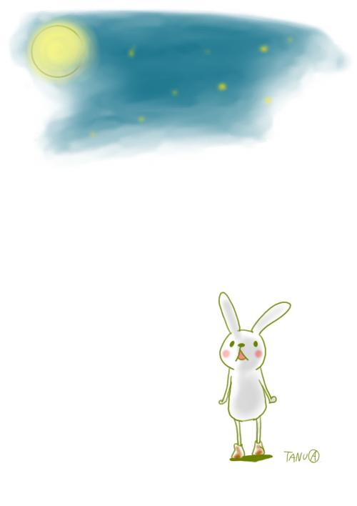 うさぎ空を見る
