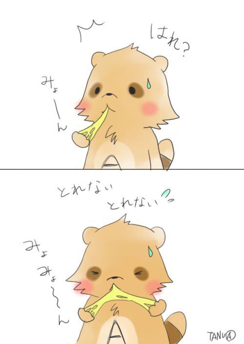 こだぬきA4