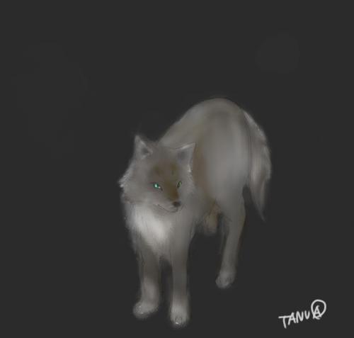 オオカミさん2