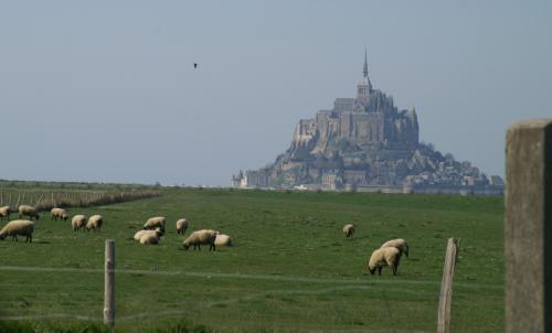 モンサンミシェルと羊