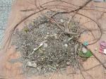 砂場に木の根